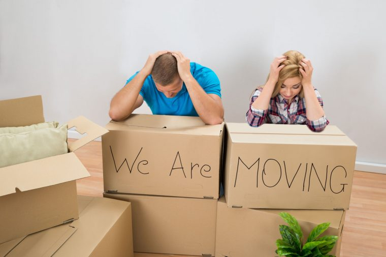 Professional Movers' Advice on Fears You May Have Heading into a Move